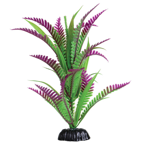 underwater-treasures-lonely-heart-fern-plant-8-inch