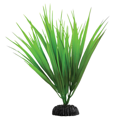 underwater-treasures-green-nile-grass-plant-8-inch