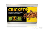 exo-terra-crickets-1-2-oz