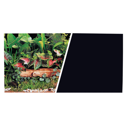 marina-background-green-plants-solid-black-12-inch