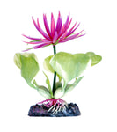 penn-plax-red-water-hyacinth-plant-5-inch