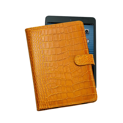 iPad Mini Case and Cover