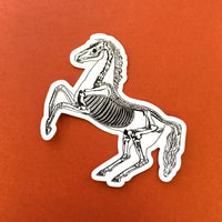 Vintage Skeleton Horse Vinyl Stickers - Goth Gifts for Animal Lovers - Pergamo Paper Goods - Vintage Inspired Collage Art for Animal Lovers