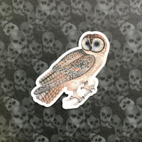 Vintage Animal Vinyl Stickers - Waterproof Owl Sticker for Bird Lovers - Pergamo Paper Goods - Vintage Inspired Collage Art for Animal Lovers