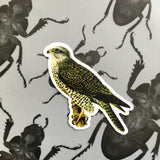 Vintage Animal Vinyl Stickers - Waterproof Bird - Falcon Sticker - Pergamo Paper Goods - Vintage Inspired Collage Art for Animal Lovers