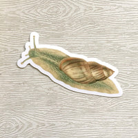 Vintage Nature Vinyl Stickers - Waterproof Snail Sticker - Bug Lovers - Pergamo Paper Goods