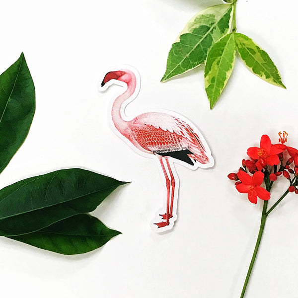 Flamingo antique illustration sticker, pink flamingo sticker, flamingo laptop sticker with flowers on white