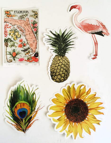 Vintage Sticker Pack 10 | Laptop Stickers | Camera Sticker | Pineapple Sticker | Sunflower Florida Flamingo Bee Pickle Peacock Butterfly