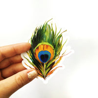 Peacock Feather Vinyl  Sticker