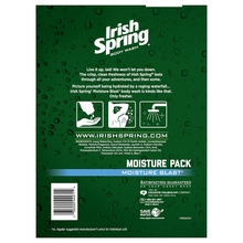 Load image into Gallery viewer, Irish Spring Moisturizing Men's Body Wash Shower Gel, Moisture Blast - 18 Fluid Ounce (2 Pack)
