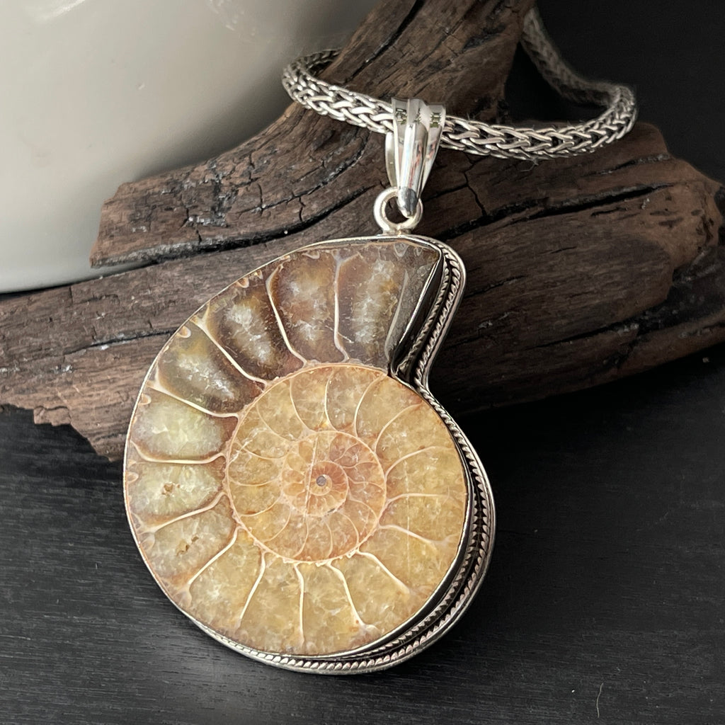 sterling silver ammonite fossil nautilus shell pendant necklace