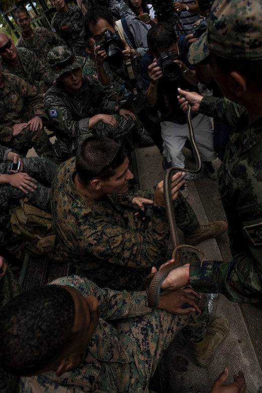 Cobra Gold 18: Allied Marines Learn Jungle Survival Skills