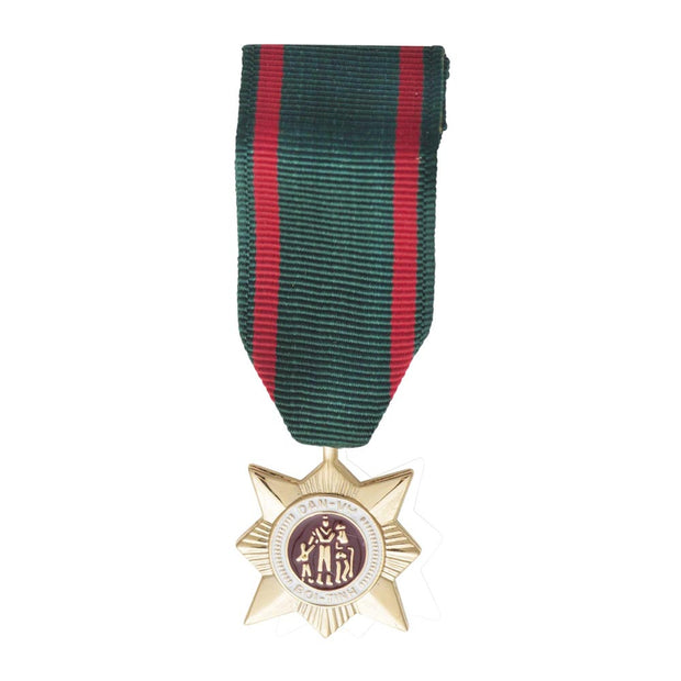 RVN Civil Actions 2nd Class Mini Medal