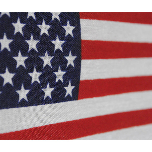 "USA 4""x6"" Polyester Flag"