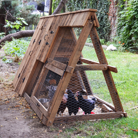 Reclaimed Cypress Chicken Coop