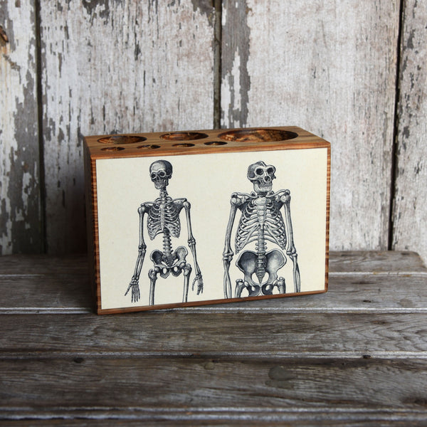 Medium Decoupaged Desk Caddy: Skeleton