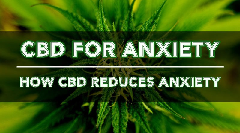 CBD for Anxiety: Calm The Mind & Body Down