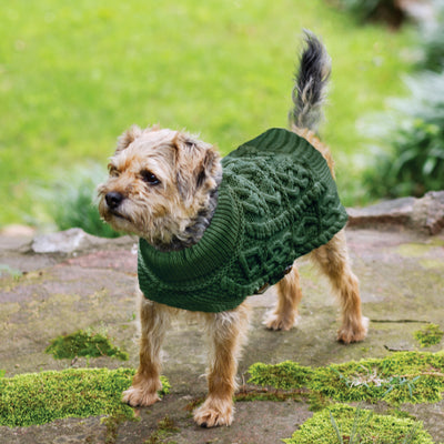 Green Dog Aran Knit Sweater