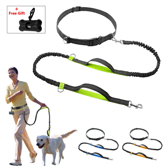 Hands Free Dog Leash with Handles & Free Bag Dispenser