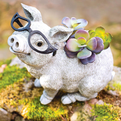Pig with Glasses Planter