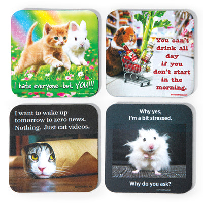 Animal Coaster Set