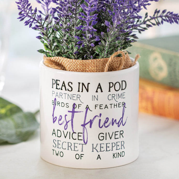 Best Friend Planter with Flowers