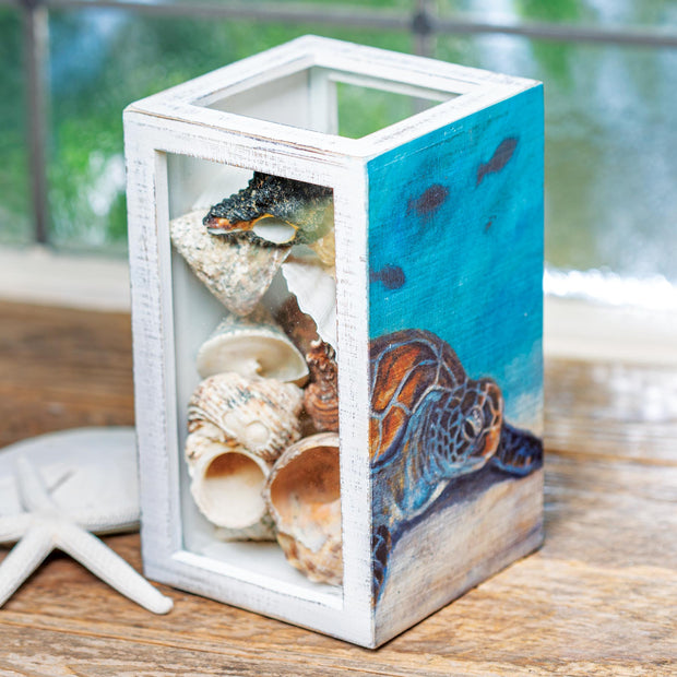 Sea Turtle Shell Holder