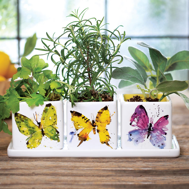 Butterflies Herb Planter