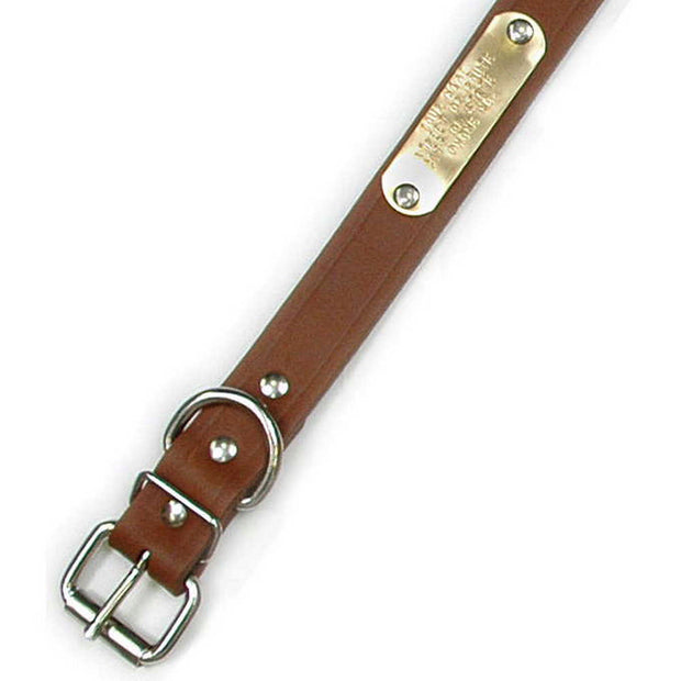 "Single Ply 1"" Wide Leather Dog Collar - Regular D-Ring"