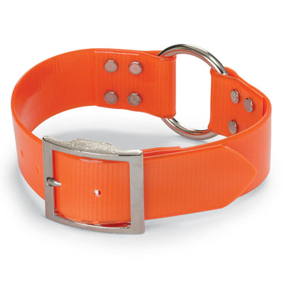 "Extra Wide 1 1/2"" Day-Glo Dog Collar - Ring-N-Center"