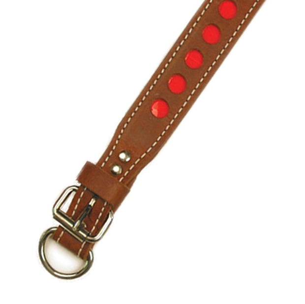 "D in Front Double Ply 1 1/4"" Wide Leather Reflective Dog Collar"