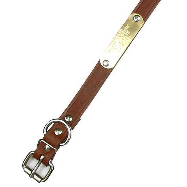 "Single Ply 3/4"" Wide Leather Dog Collar - Regular D-Ring"
