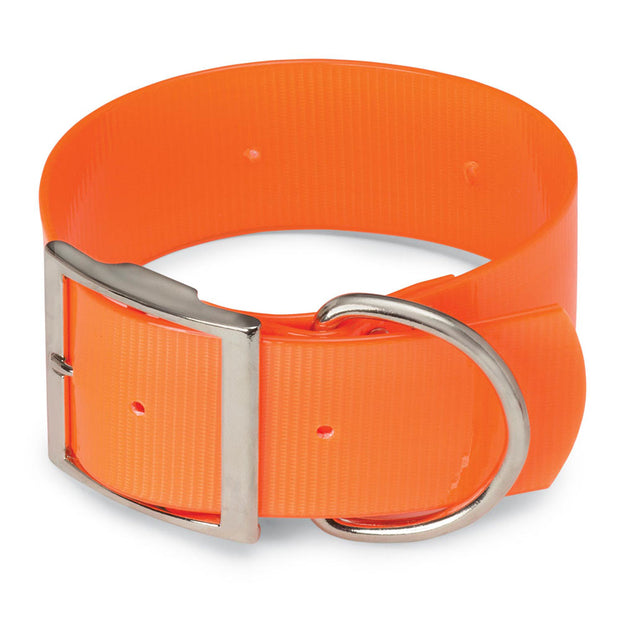 "Extra Wide 2"" Day-Glo Dog Collar - D-Ring in Front"