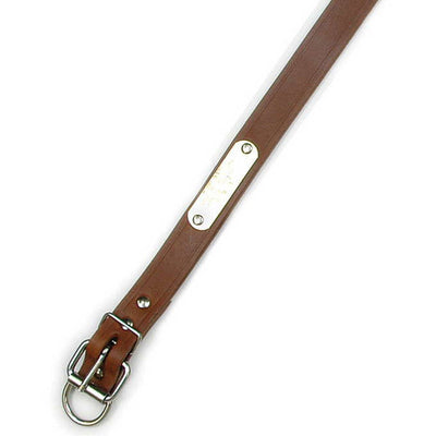 "Single Ply 1"" Wide Leather Dog Collar - Extended D-Ring"