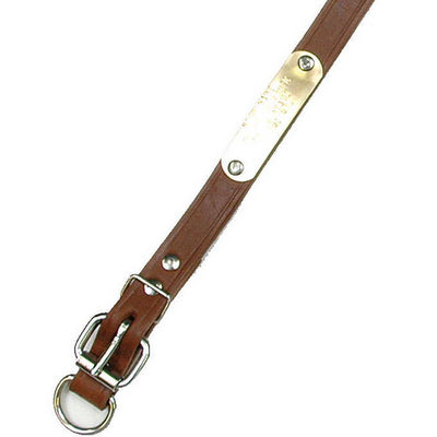 "Single Ply 3/4"" Wide Leather Dog Collar - Extended D-Ring"