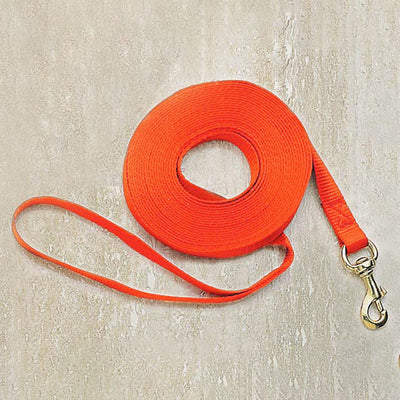 Nite Lite 25' Long Nylon Check Cord For Dogs