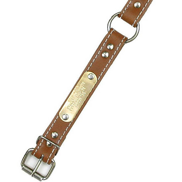 "Double Ply 1"" Wide Stitched Leather Dog Collar - Ring-N-Center"