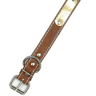 "Double Ply 1"" Wide Stitched Leather Dog Collar - D-Ring Behind Buckle"