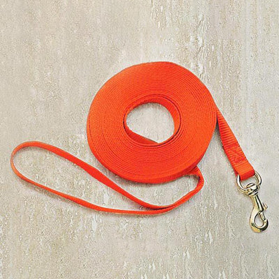 Nite Lite 50' Long Nylon Check Cord For Dogs