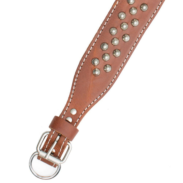 "Double Ply 1 1/2"" Wide Stitched & Studded Leather Dog Collar"