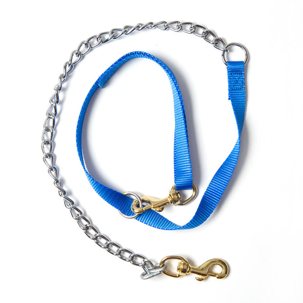 Nite Lite 1-Dog Single-Ply Blue Nylon Tree Tie Lead