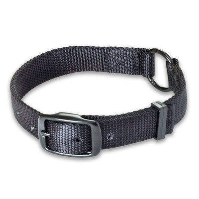 "Nite Lite Double Ply Nylon 1"" Ring-N-Center Black Dog Collar"