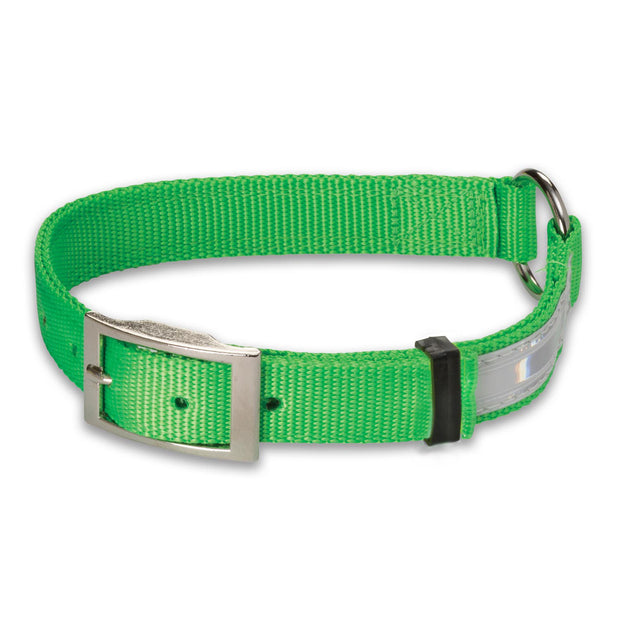 Nite Lite Hi-Viz Nylon Collar Ring-N-Center with Reflexite Strip