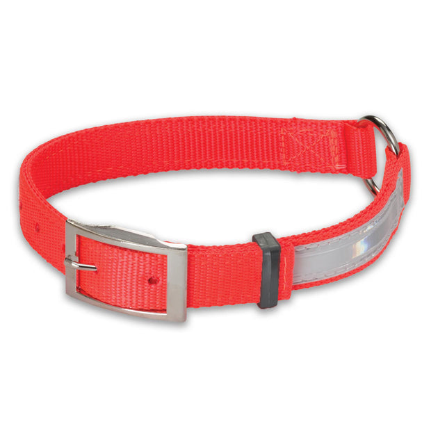 Hi-Viz Nylon Collar Ring-N-Center Collar with Reflexite Strip