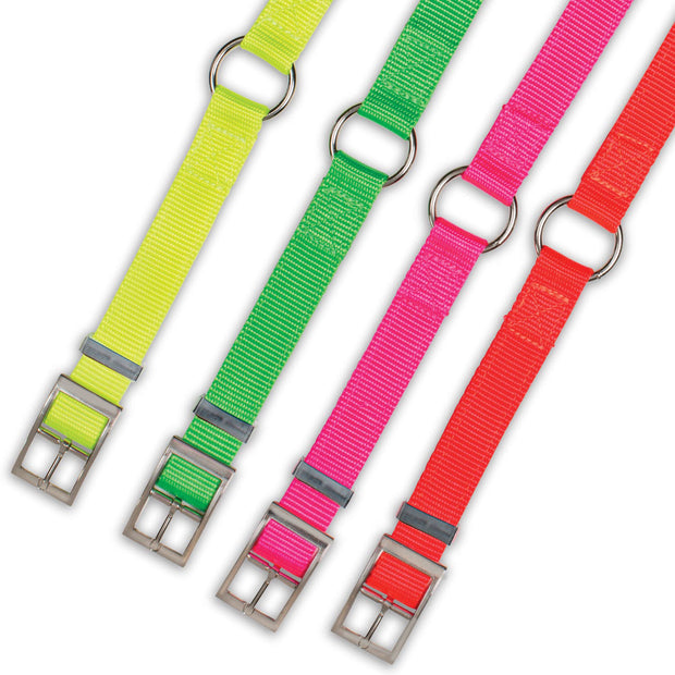 "Nite Lite Hi-Viz 1"" Nylon Ring-N-Center Collar"