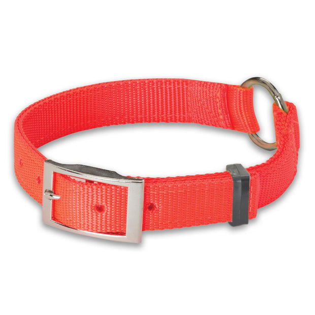 "Hi-Viz 1"" Nylon Ring-N-Center Collar"