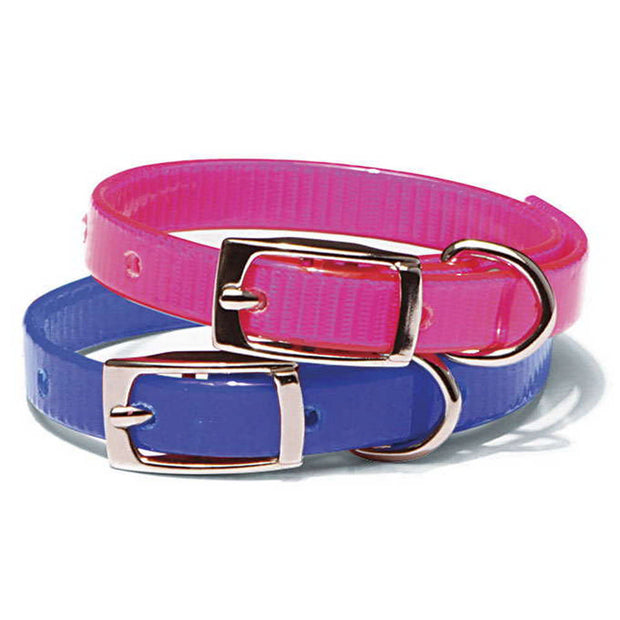Nite Lite Day-Glo Puppy and Cat Collars