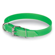 "3/4"" Day-Glo Collar D-Ring in Front"