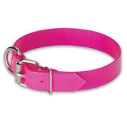 "Nite Lite 3/4"" Day-Glo Collar D-Ring in Front"