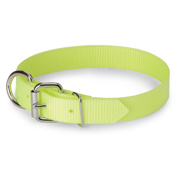 "Nite Lite 1"" Day-Glo Dog Collar D-Ring in Front"